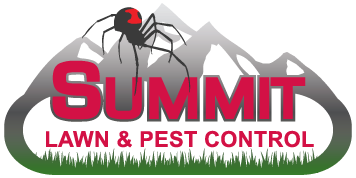 summit-logo1